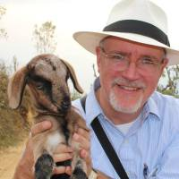 Man in white panama hat holding a baby goat